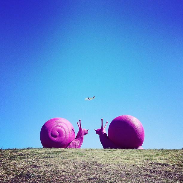 snailovation12