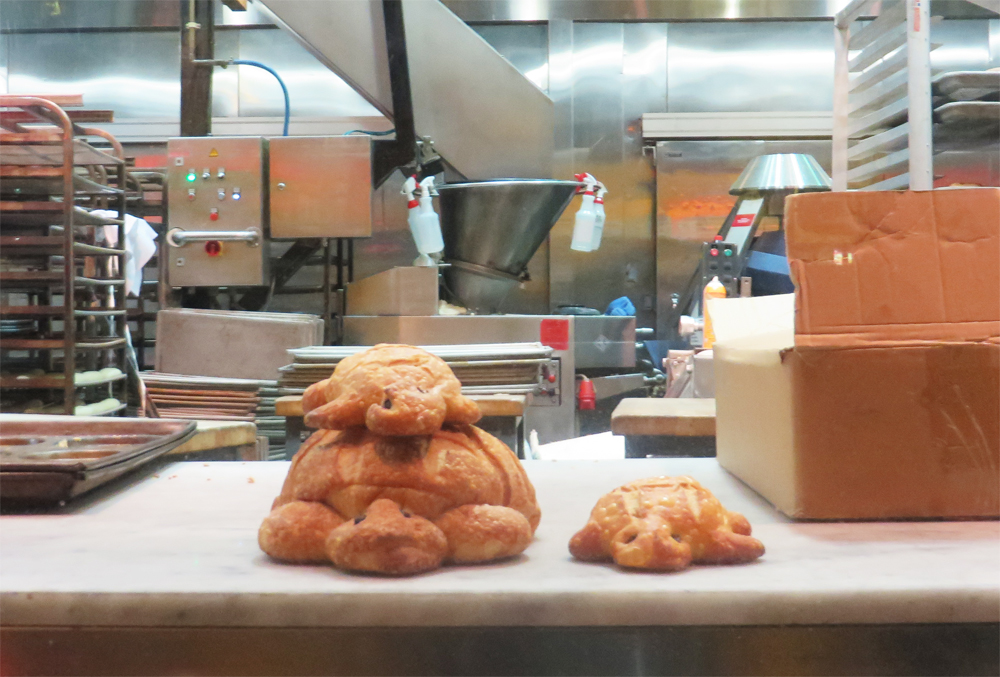 sourdough turtles in the window at boudin at fisherman's wharf in san francisco