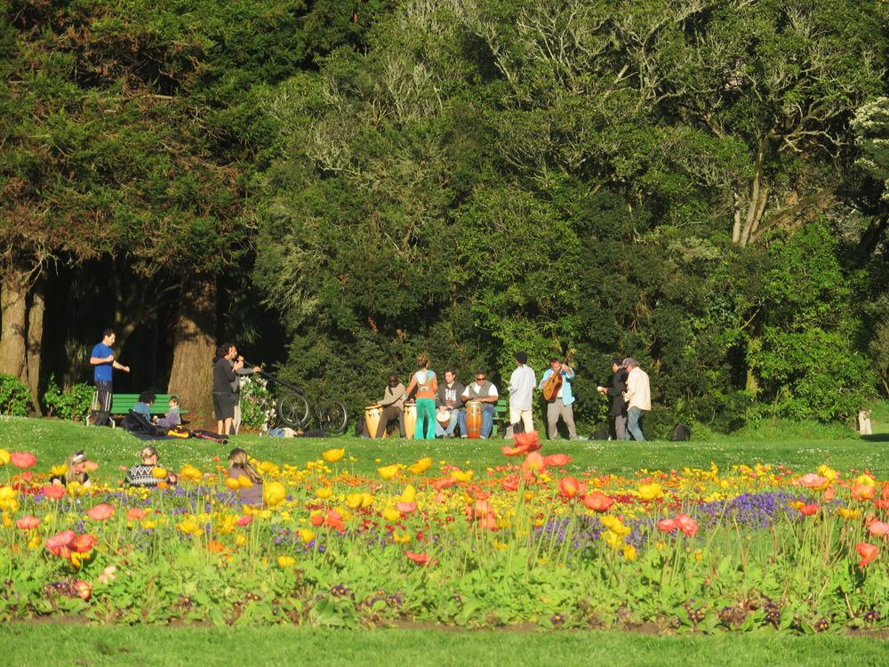 golden-gate-park-musicians