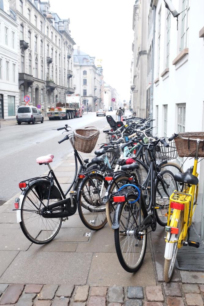copenhagen-majestic-bike-herd