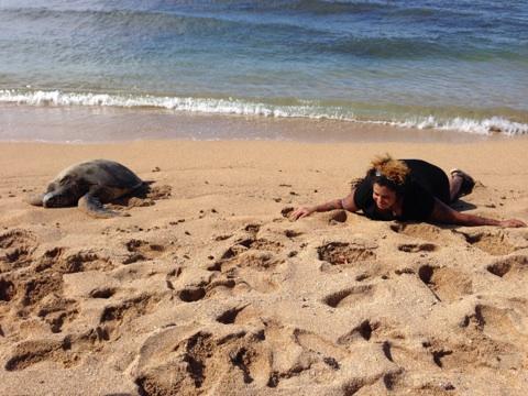 kimya-and-turtle