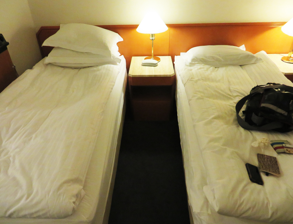 Two twin beds, like all good celibate types sleep in
