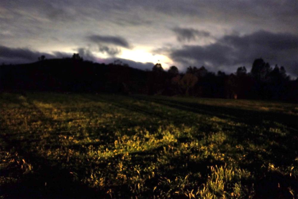 Long-exposure photo of a field at night in Santa Margarita, CA