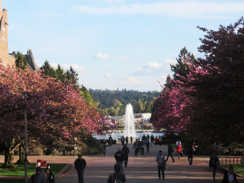 The University of Washington fountain and Mount Rainier