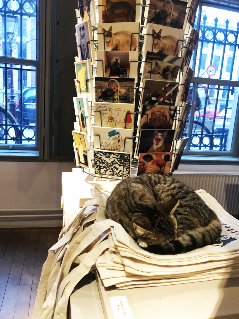A photo of a cat curled up and sleeping on a pile of souvenir tote bags, in front of a rack of postcards with photos and drawings of cats on them
